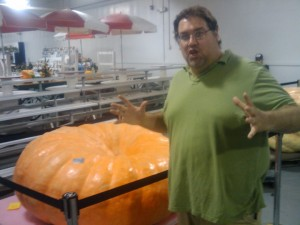 Indiana State Fair Giant Pumpkins